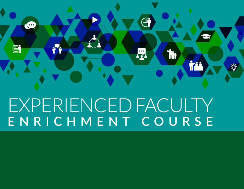 Experienced Faculty Enrichment Course